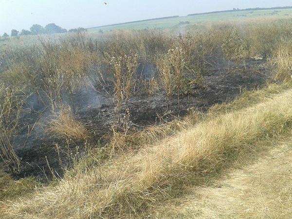 Incendii de vegetatie periculoase în zona Bârlad