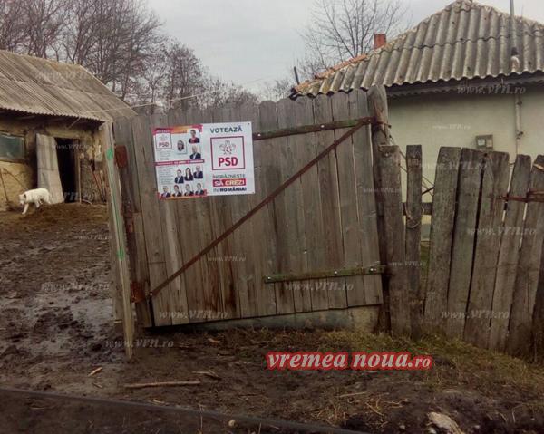 PSD a lipit, ilegal, zeci de afise electorale în comuna Dãnesti. Biroul Electoral judetean, fãrã reactie!