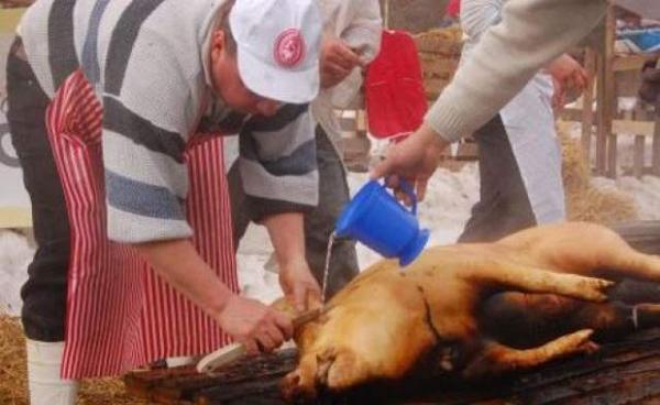 Atentie la carnea de porc. Aflã aici unde poti face examinarea pentru trichinelozã!