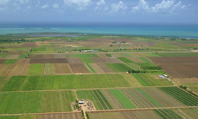 Peste 400 de mii de hectare de teren agricol se aflã în judetul Vaslui