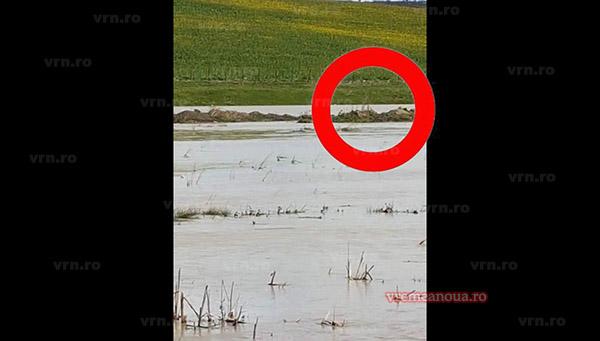 UPDATE: Bărbatul de 44 de ani dispărut în comuna Iana a fost gasit mort, in paraul Tutova, la cativa kilometri distanta de Iana!