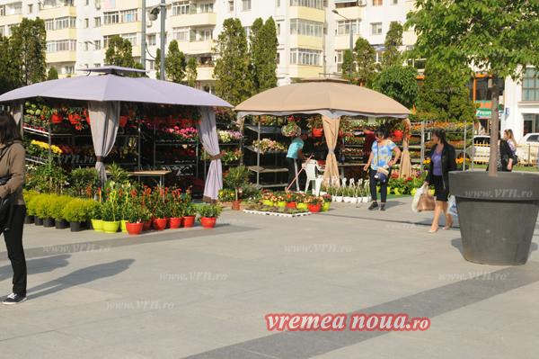 serbarea florilor orgacizare3510
