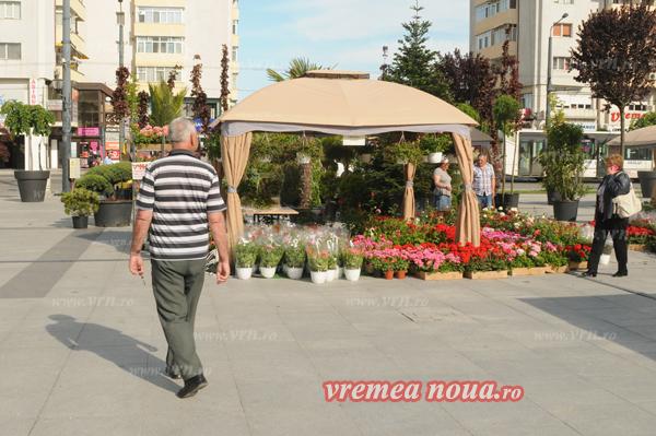 serbarea florilor orgacizare3514