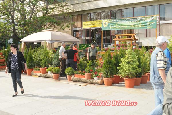 serbarea florilor orgacizare3523