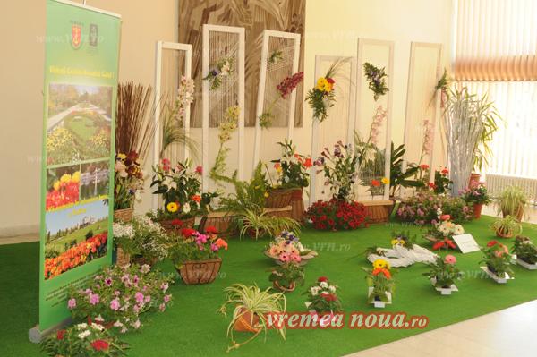 serbarea florilor3684