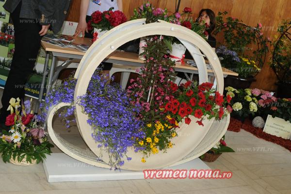 serbarea florilor3687