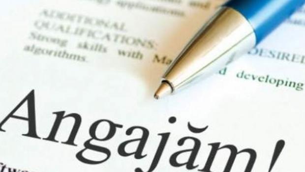Guvernul suspendă ocuparea prin concurs a posturilor vacante din autorităţile şi instituţiile publice centrale