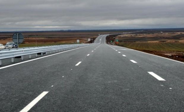 Statul român va plăti daune unui şofer care a lovit un câine pe autostradă