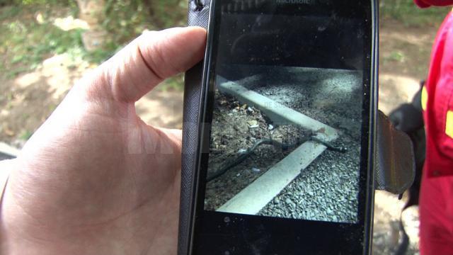 Panică în faţa unui bloc din Suceava, după apariţia unui şarpe printre copii