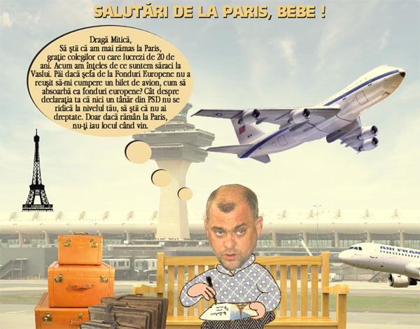 Cum a fost uitat Trifan, vicele de la CJ, pe aeroport la Paris? (pamflet)