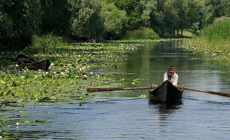 Guvernatorul Deltei: Acum în Deltă, peștele e cam ca într-un lac din jurul Bucureștiului