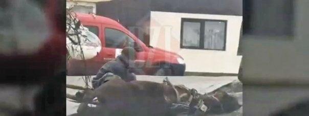 Iasulul zilelor noastre! Un cal epuizat a zacut pe sosea cateva minute sub ochii trecatorilor. Cine trebuie tras la raspundere?