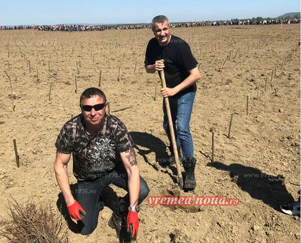 "Politistii vasluieni au plantat stejari în Parcul Memoriei Nationale ""Stejarii României"""