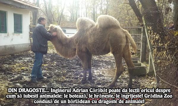 Grãdina Zoologicã din Bârlad, destinatie de weekend si nu numai! | FOTO