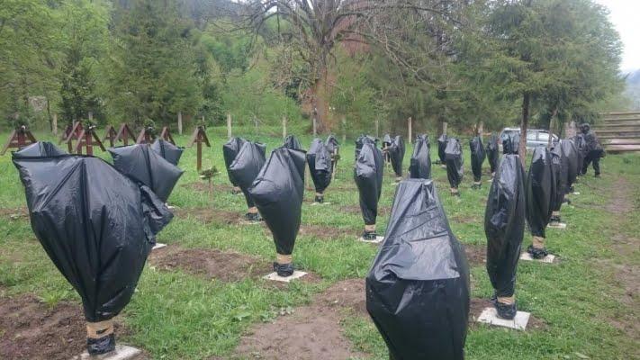 Crucile eroilor români din Valea Uzului, acoperite cu saci de gunoi. Dispută în cimitirul situat la graniţa Bacău – Harghita