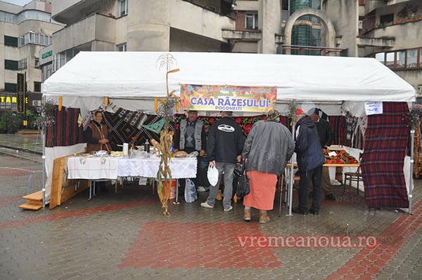 """""""Festivalul Verii""""de la Bârlad, pe masa consilierilor locali!"""