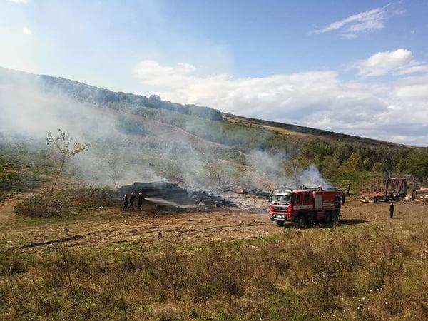 Incendiu devastator la un depozit de lemne din Alexandru Vlahutã! (FOTO)