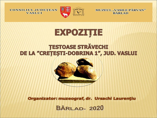 Expozitie online – scurt metraj realizat de muzeul bârlãdean! (VIDEO)